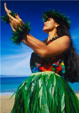 b2a1c8eb hula skirt hula skirt